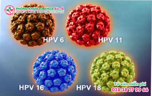 Những Thông Tin Cần Biết Về Bệnh HPV