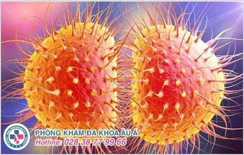 Kiến thức y khoa về bệnh lậu cần biết